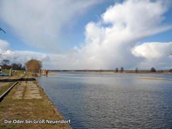 Die-Oder-bei-Gross-Neuendorf