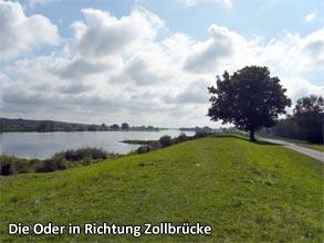 Die-Oder-in-Richtung-Zollbruecke